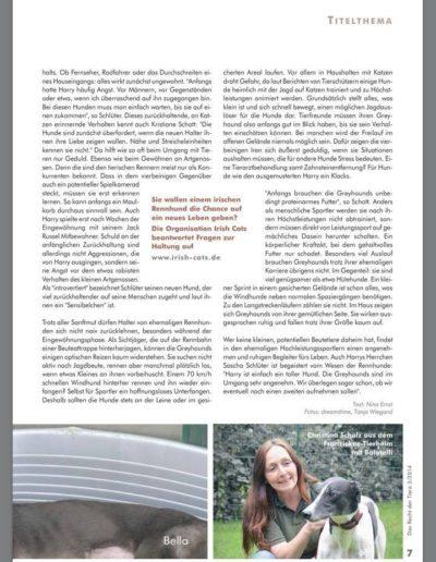 Das Recht der Tiere 2/2014 schnelle hunde - schnelles geld: greyhounds! Seite 4