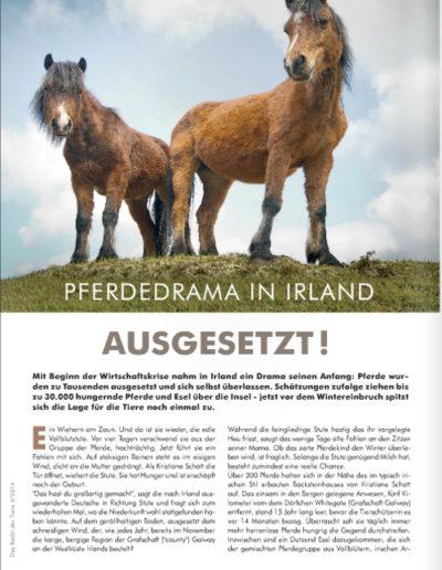 Das Recht der Tiere 4/2014 Pferdedrama in Irland: AUSGESETZT!