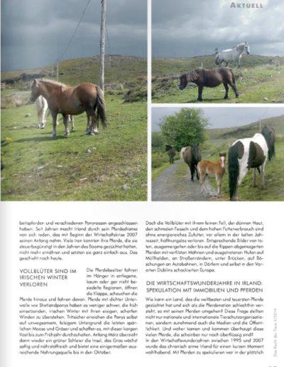 Das Recht der Tiere 4/2014 Pferdedrama in Irland: AUSGESETZT! Seite 2